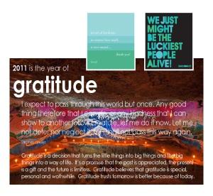 year description pages 2011