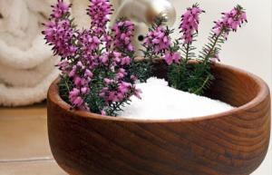 health-and-epsom-salt