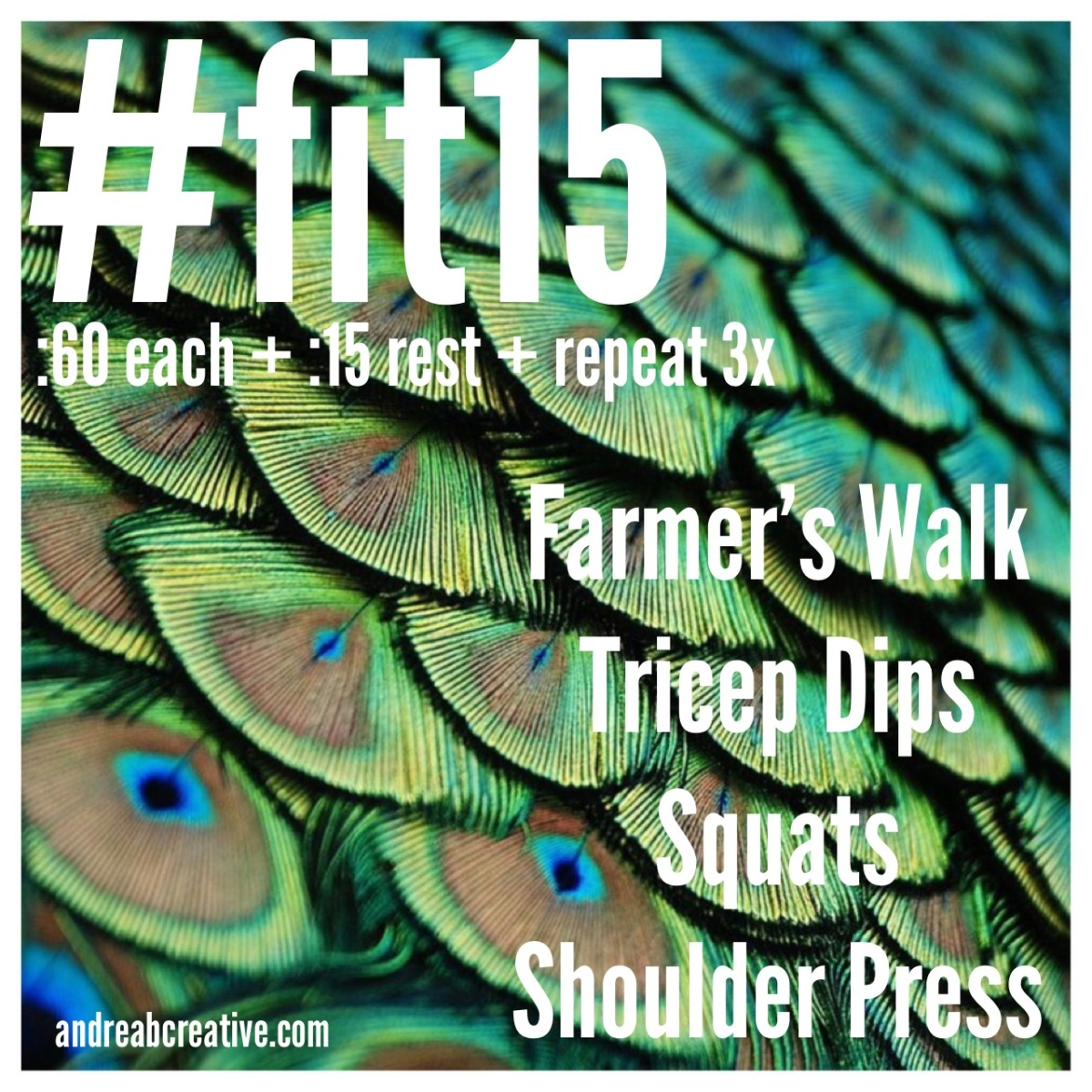 #fit15 - my favorite exercises